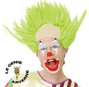 GrymReaper, Contrebandier ( en fuite ) Normal_perruque-faux-crane-blanc-et-cheveux-verts-dresses-clown-deguisement-spectacle-anniversaire-humour-cirque