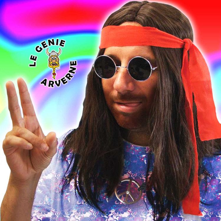 zoom_perruque-baba-cool-deguisement-hippie-peace-and-love-beatnik-flower-power-chevelure-faux-cheveux-longs-postiche-moumoute-coiffure-bandeau-imiter-imitation-john-lennon-psychedelique-woodstock-new-age-tignasse-coiffe