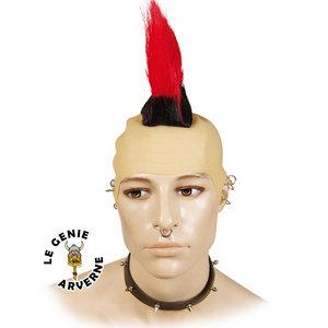 Pin coupe iroquoise homme on pinterest for Coupe de cheveux punk iroquois